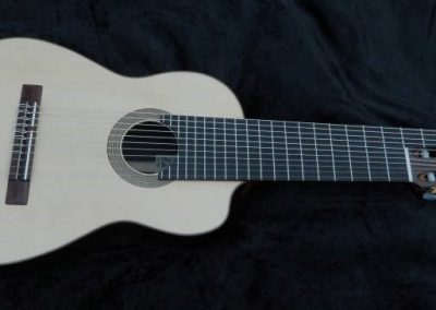 the-alto-11-string-guitar (1)