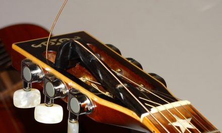 Extender on the Washburn R308s – by Nikos Mastorakis